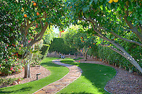Winding walking path leads through fruit trees and landscaping