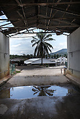 A pool of bleached water and a boom gate separates the pigs in the farm from the outside world and avoids any infections coming in or out of the pig farm at a highly protected pig farm in Ipoh, Perak, Malaysia on October 15th, 2016. <br /> In September 1998, a virus among pig farmers (associated with a high mortality rate) was first reported in the state of Perak in Malaysia. Dr. Chua investigated and discovered the virus and it was later named, Nipah Virus. The outbreak in Malaysia was controlled through the culling of &gt;1 million pigs.