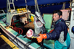 Fisherman Masayoshi Kikuchi unloads six Pacific bluefun tuna from his boat at Oma Port,  northern Japan on 23 September 2008. Kikuchi's haul of six tuna is a rarity these days in Oma, a town that has long been synonymous with high-quality tuna in Japan. .Photographer: Robert Gilhooly