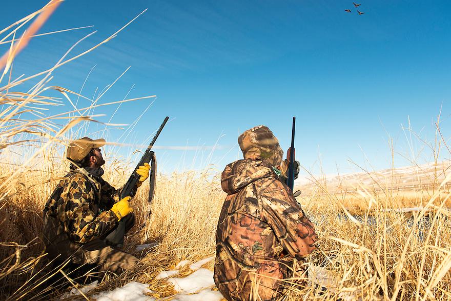 Nick Romano, left, and Christine Marozick, of Bozeman, Montana, hunt waterfowl on the Red Rock River near Dillon, Montana.
