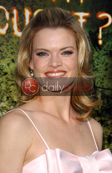 Missi Pyle<br />at the premiere of &quot;The Reaping&quot;. Mann Village Theatre, Westwood, CA. 03-29-07<br />Dave Edwards/DailyCeleb.com 818-249-4998