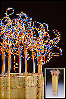 "Wire basket sculpture ""Fountain"" by artist June Kerseg-Hinson, incorporating copper,brass and bead elements"