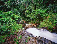 Huay To Falls, Khao Phanom Bencha National Park, Rainforest near Andaman Sea, Krabi Province, Thailand