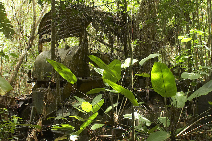 Abandoned bulldozer buried by the jungle near the village of Nason on the Marowijne River, Suriname.