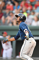 Shortstop Luis Carpio (18) of the Columbia Fireflies bats in a game against the Greenville Drive on Thursday, June 15, 2017, at Fluor Field at the West End in Greenville, South Carolina. Columbia won, 7-2. (Tom Priddy/Four Seam Images)
