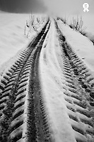 Vehicule tire tracks on hazy and snowy path (Licence this image exclusively with Getty: http://www.gettyimages.com/detail/92907716 )