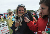 NWA Democrat-Gazette/FLIP PUTTHOFF <br /> POOCH READY TO RACE<br /> Melissa Kyle gets her dog, Ruby, signed up for a dog race with help from Savannah Key (right) during the Hay Days event Saturday Sept. 19 2015 in Bella Vista. Dog races were part of the festivities that also included exhibits from several safety agencies, vendor booths, dunk tank and tours of a helicopter air ambulance. The event was held at Arkansas 279 and Arkansas 340 in Bella Vista.