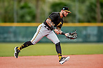 5 March 2019: Pittsburgh Pirates minor league Position Player and Top Prospect shortstop Stephen Alemais works on infield drills at Pirate City in Bradenton, Florida. Mandatory Credit: Ed Wolfstein Photo *** RAW (NEF) Image File Available ***