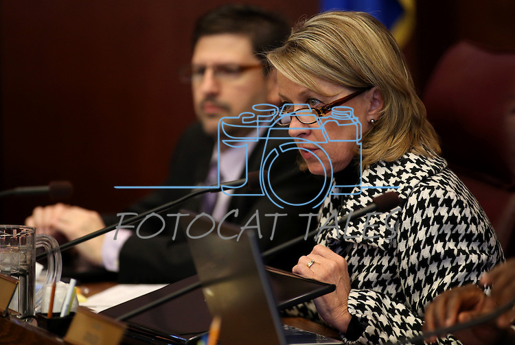 Nevada Sen. Barbara Cegavske, R-Las Vegas, works in committee on Tuesday, Feb. 19, 2013, at the Legislative Building in Carson City, Nev. Sen. Mark Manendo, D-Las Vegas, is at left..Photo by Cathleen Allison