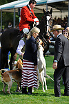 Stamford, Lincolnshire, United Kingdom, 8th September 2019, HRH The Countess of Wessex gets a kiss from one of the Fitzwilliam Hunt hounds during their visit to the 2019 Land Rover Burghley Horse Trials, Credit: Jonathan Clarke/JPC Images