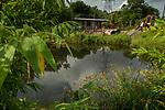 Construction for maintaining urban wetland, Diyasaru Park, Colombo, Sri Lanka