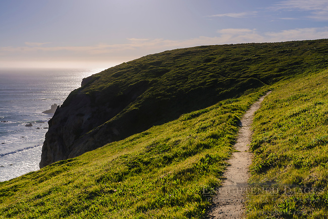 Hiking trail along the Point Reyes headlands near Chimney Rock, Point Reyes National Seashore, Marin County, California
