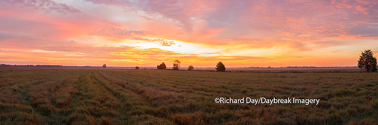 63893-02619 Sunrise at Prairie Ridge State Natural Area, Marion County, IL
