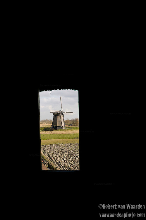 Dutch windmills in the landscape.
