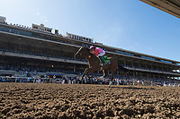 DEL MAR, CA - NOVEMBER 04: Caledonia Road #12, ridden by Mike Smith, beats out the pack on the the back stretch on Day 2 of the 2017 Breeders' Cup World Championships at Del Mar Thoroughbred Club on November 4, 2017 in Del Mar, California. (Photo by Alex Evers/Eclipse Sportswire/Breeders Cup)