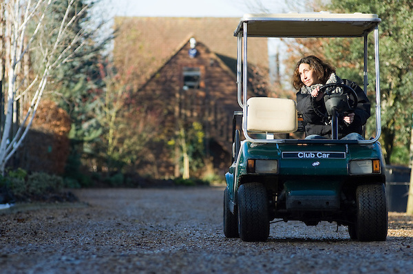 Christina Glynn-Jones drives along a path lined with trees in buggy