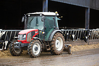 Compact tractor pushing rations up on a dairy farm<br /> &copy;Tim Scrivener Photographer 07850 303986<br />      ....Covering Agriculture In The UK....