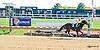 Rapid Repair winning at Delaware Park on 10/8/15
