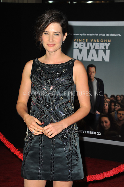 WWW.ACEPIXS.COM<br /> <br /> November 3 2013, LA<br /> <br /> Cobie Smulders arriving at the Los Angeles premiere of 'Delivery Man' at the El Capitan Theatre on November 3, 2013 in Hollywood, California.<br /> <br /> By Line: Peter West/ACE Pictures<br /> <br /> <br /> ACE Pictures, Inc.<br /> tel: 646 769 0430<br /> Email: info@acepixs.com<br /> www.acepixs.com