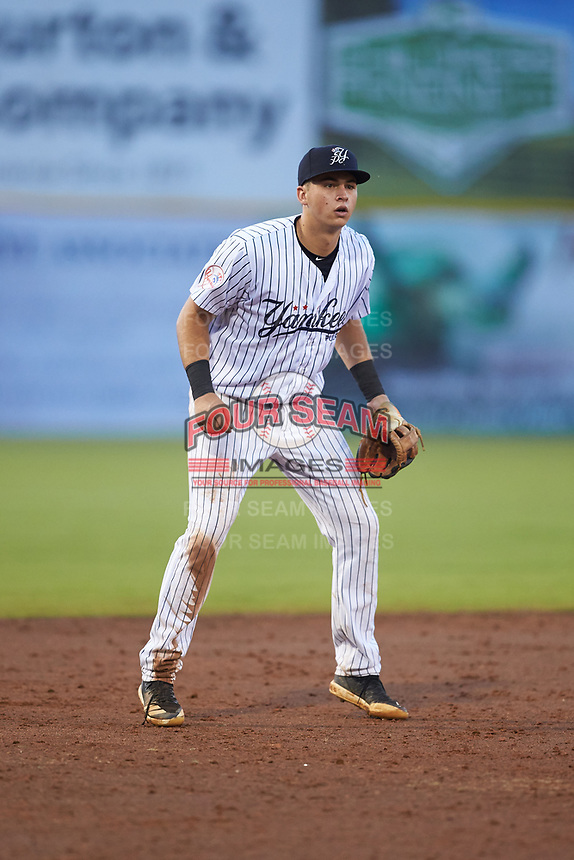 Pulaski Yankees third baseman Chad Bell (63) on defense against the Danville Braves at Calfee Park on June 30, 2019 in Pulaski, Virginia. The Braves defeated the Yankees 8-5 in 10 innings.  (Brian Westerholt/Four Seam Images)