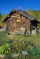 Historic sod roof log cabin recorders office for Kantishna gold mining district, circa 1905, Kantishna, Alaska, Denali National Park
