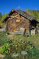 Historic sod roof log cabin recorders office for Kantishna gold mining district, circa 1905, Kantishna, Alaska, Denali National Park