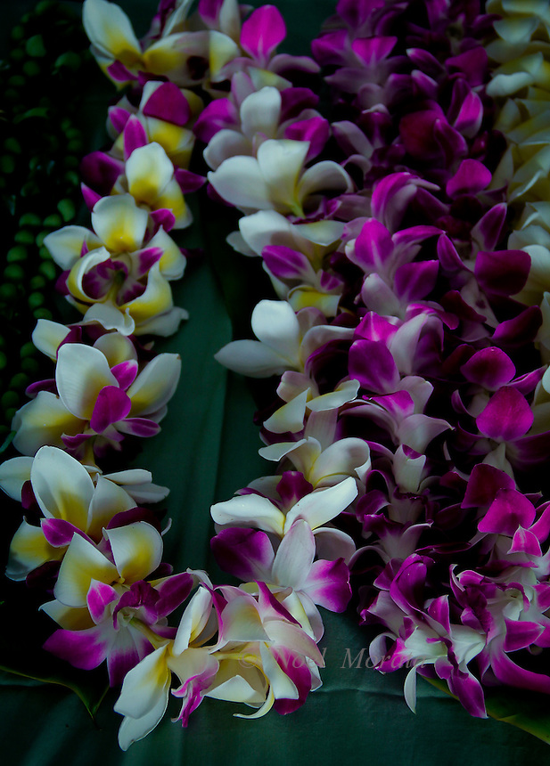 Colorful flowers and leis for a Hawaiian Luau event.