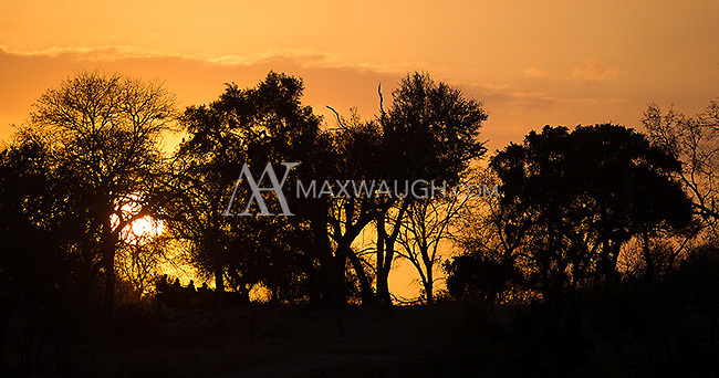 A safari vehicle takes tourists out into the bush at sunrise.
