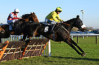 The Wicked Chicken ridden by Millie Wonnacott in the The Tysers Mares' Handicap Hurdle during Horse Racing at Plumpton Racecourse on 2nd December 2019