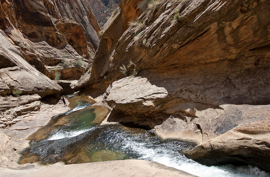 A hiker pauses to enjoy the humbling scale and beauty of the narrows of Lower Death Hollow, near the Escalante Canyon of Utah.