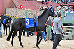 HOT SPRINGS, AR - APRIL 14: Oaklawn Handicap. Oaklawn Park on April 14, 2018 in Hot Springs,Arkansas. #3 Sonneteer (Photo by Ted McClenning/Eclipse Sportswire/Getty Images)