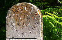 A typical champagne champenoise mile stone or marker stone that indicates the owner of the vineyard: Chiquet Pere & Fils in Dizi, Champagne Jacquesson in Dizy, Vallee de la Marne, Champagne, Marne, Ardennes, France