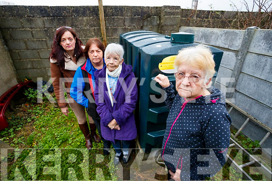 Christina Mulligan (On Right) who has Heating Oil stolen from her House in Tralee, also in Photo are: Helen Mackessy, Moderator of Tralee Do You Know, Maura Walsh and Philomela Duggan, Christina's Sister.
