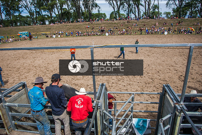BLENHEIM, NEW ZEALAND. FEBRUARY 28. Tua Marina Rodeo, Blenheim. Photo: Ricky Wilson/Shuttersport
