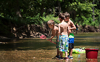 NWA Democrat Gazette/SPENCER TIREY Cade Chesnutt, 6, looks at his net as Reid Chesnutt, 8, right and Zander Osborn, 7,  look to see if he caught a fish, Monday Jul10, 2017, while playing in the McKisic Creek near Lake Bella Vista. The boys where out with their grandmothers enjoying the nice weather.