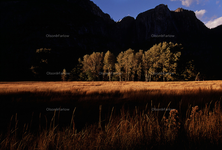 Advocating for its protection, Frederick Law Olmsted planted the seeds for the National Park System 25 years before it was designated. He suggested the road on the valley floor in Yosemite National Park travel around the perimeter--not down the middle along the Merced River--to not spoil the view.
