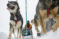 Matt Calore runs on Finger Lake just prior to the Finger Lake checkpoint during Iditarod 2008