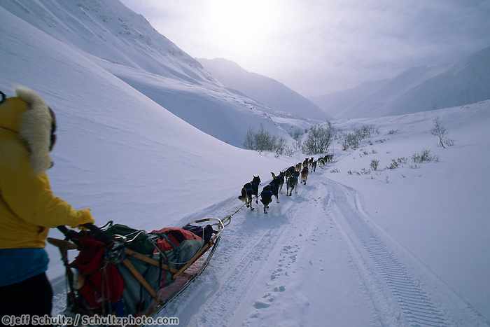 Charlie Boulding In Rainy Pass Alaska.2004 Iditarod