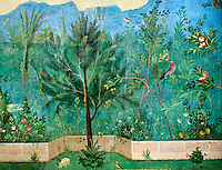 Painted Domestic Pine in the Roman fresco of a garden from Villa Livia (Early first century AD), Rome, Livia was the wife of Roman emperor Augustus.  Museo Nazionale Romano ( National Roman Museum), Rome, Italy.<br /> Trees and shrubs had symbolic importance to the Romans as can be see by the plants used in the trompe-l'œil frescoes from the Villa Livia, Rome, which contains plants linked to the deities particularily venerated by Augustus and Livia. <br /> <br /> Domestic pine: present in the mystery rites of Cybele, Attis and Dionysus. Laurel: sacred to Apollo, symbol of triumph, it recalls the famous prodigy associated with Livia Drusilla.