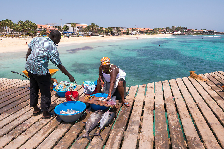 Cabo Verde, Kaap Verdie, KaapVerdie, sal kaapverdie santa maria 2017<br /> Santa Maria, officieel  is een plaats in het zuiden van het Kaapverdische eiland Sal met 6.272 inwoners. Met de opkomst van het toerisme heeft de plaats bekendheid gekregen en is het toerisme de voornaamse inkomstenbron<br /> Kaapverdi&euml;, dat behoort tot de geografische regio Ilhas de Barlavento<br />   foto  Michael Kooren<br /> strand Santa Maria  beach boats, fish, fishing, vis steiger, verse vis, vis verkoop , fish sale , fresh fish, tuna, tunafish,