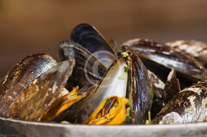Belgium, Brussels, Steamed mussels