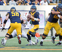 CAL Football vs Stanford, November 22, 2014