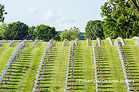 65095-02804 Gravestones at Jefferson Barracks National Cemetery St. Louis, MO