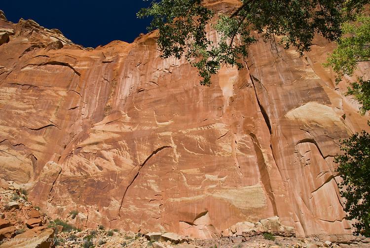 Landscapes of Capitol Reef National Park-petroglyphs found just below center base rock