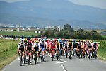 The peloton in action during Stage 1 of Criterium du Dauphine 2020, running 2185km from Clermont-Ferrand to Saint-Christo-en-Jarez, France. 12th August 2020.<br /> Picture: ASO/Alex Broadway | Cyclefile<br /> All photos usage must carry mandatory copyright credit (© Cyclefile | ASO/Alex Broadway)