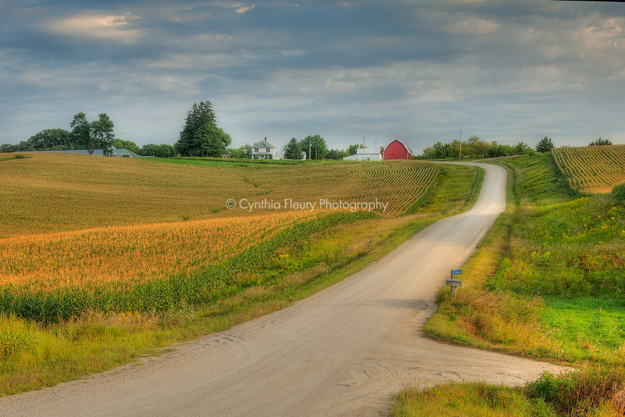 Road to Farm in Lanesboro, MN Area.
