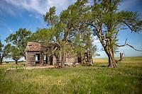 An abanedoned homestead in the Flint Hills of Kansas.