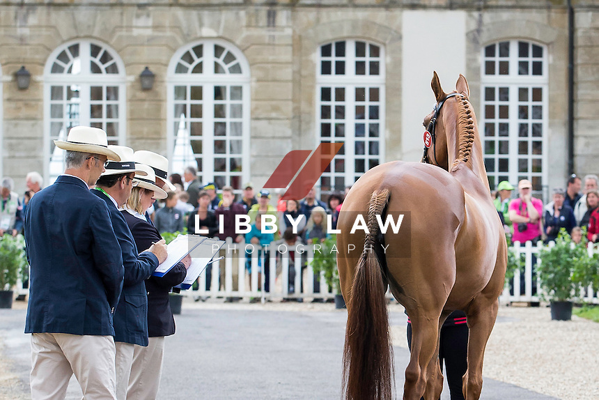 BEL-Karin Donckers (FLETCHA VAN'T VERAHOF) FIRST HORSE INSPECTION: EVENTING: The Alltech FEI World Equestrian Games 2014 In Normandy - France (Wednesday 27 August) CREDIT: Libby Law COPYRIGHT: LIBBY LAW PHOTOGRAPHY - NZL