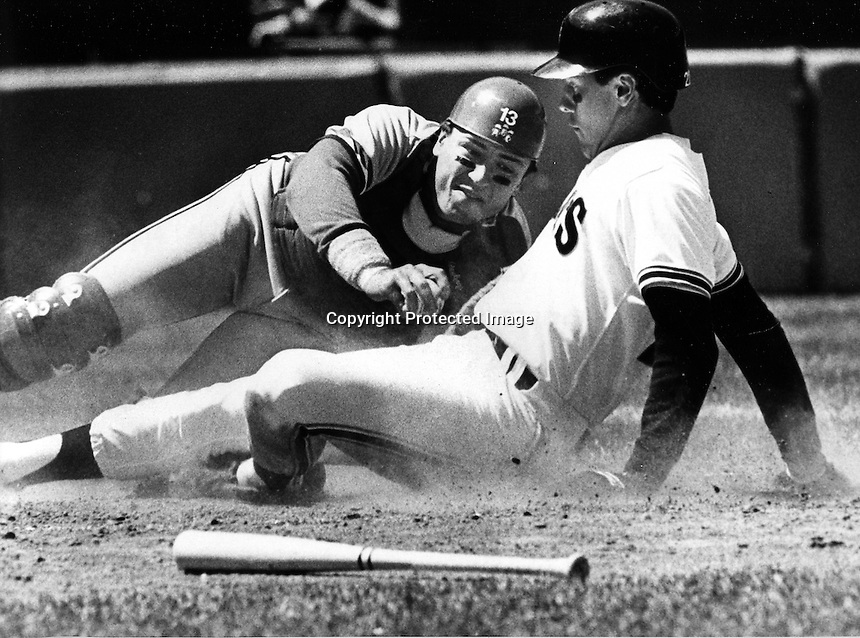 St. Louis Cardinals catcher Clint Hurdle tags out San Francisco Giants Will Clark after he attempted to score from 2nd base. (1986 photo/Ron Riesterer)