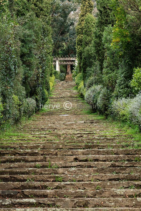 Domaine du Rayol en novembre : le grand escalier et la pergola en haut.